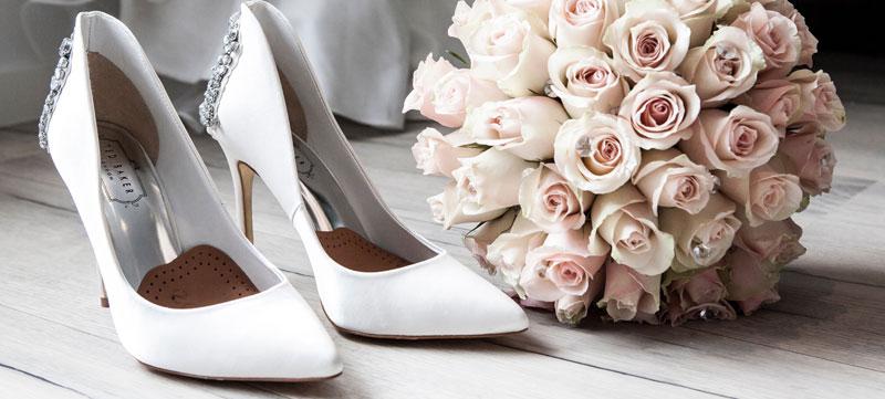 cat-shoes